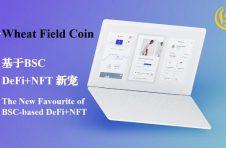 Wheat Field Coin,基于BSC的DeFi+NFT新宠